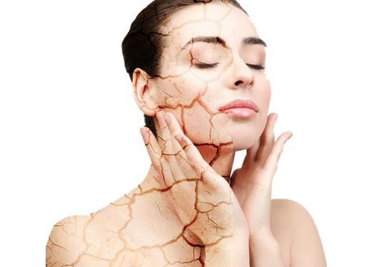 Best Skin Care Products For Dry Skin